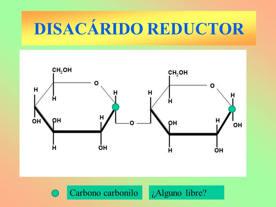 DISACÁRIDO REDUCTOR Carbono carbonilo ¿Alguno libre