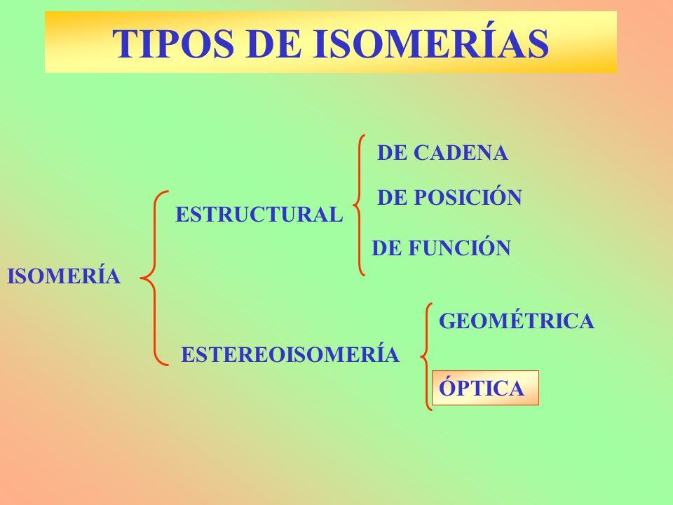 TIPOS DE ISOMERÍAS DE CADENA DE POSICIÓN ESTRUCTURAL DE FUNCIÓN