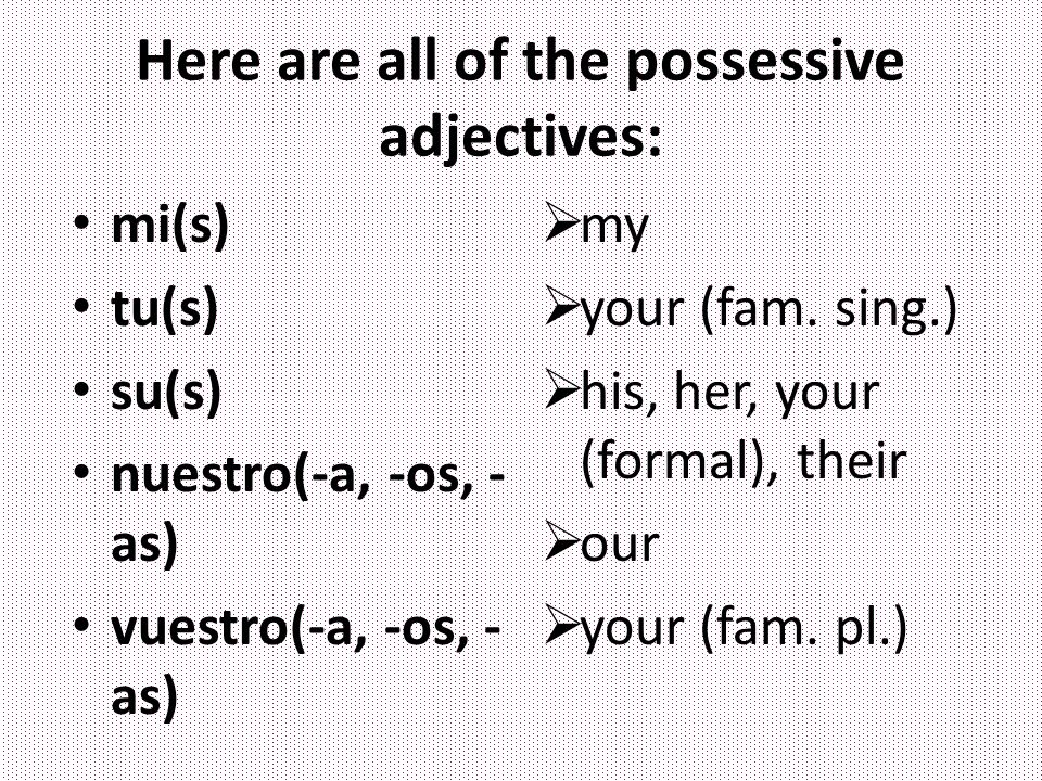 Here are all of the possessive adjectives: