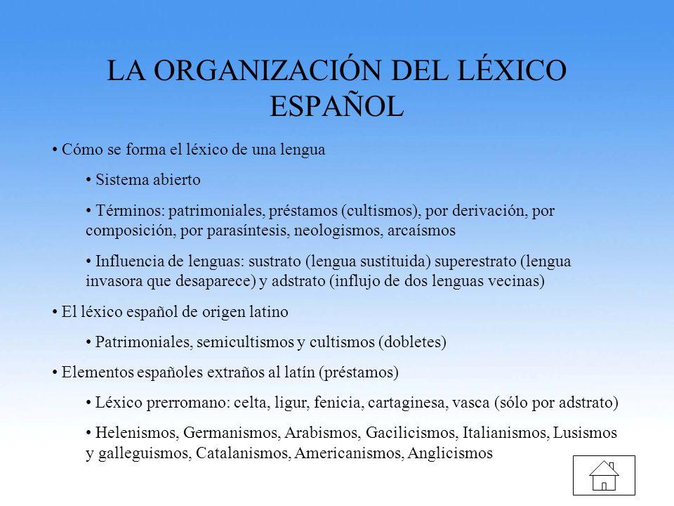 LA ORGANIZACIÓN DEL LÉXICO ESPAÑOL