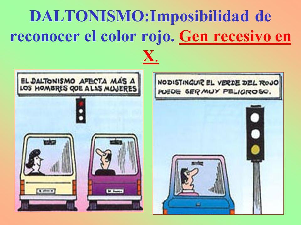 DALTONISMO:Imposibilidad de reconocer el color rojo. Gen recesivo en X.