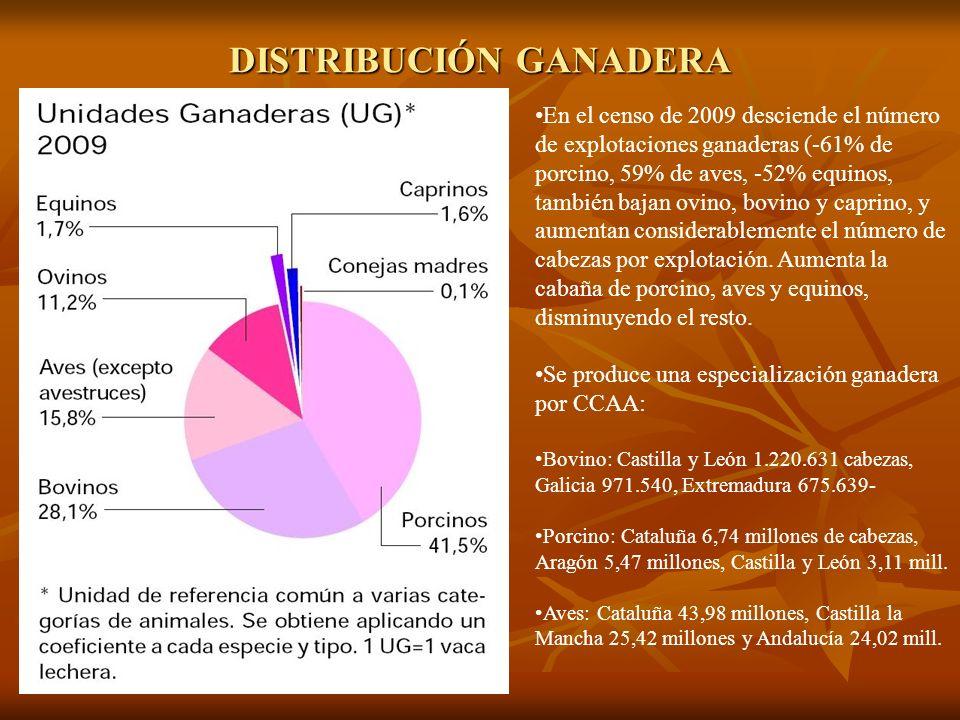 DISTRIBUCIÓN GANADERA