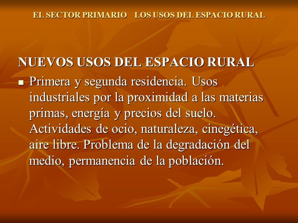 EL SECTOR PRIMARIO LOS USOS DEL ESPACIO RURAL