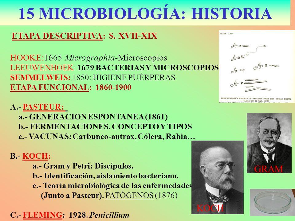 15 MICROBIOLOGÍA: HISTORIA