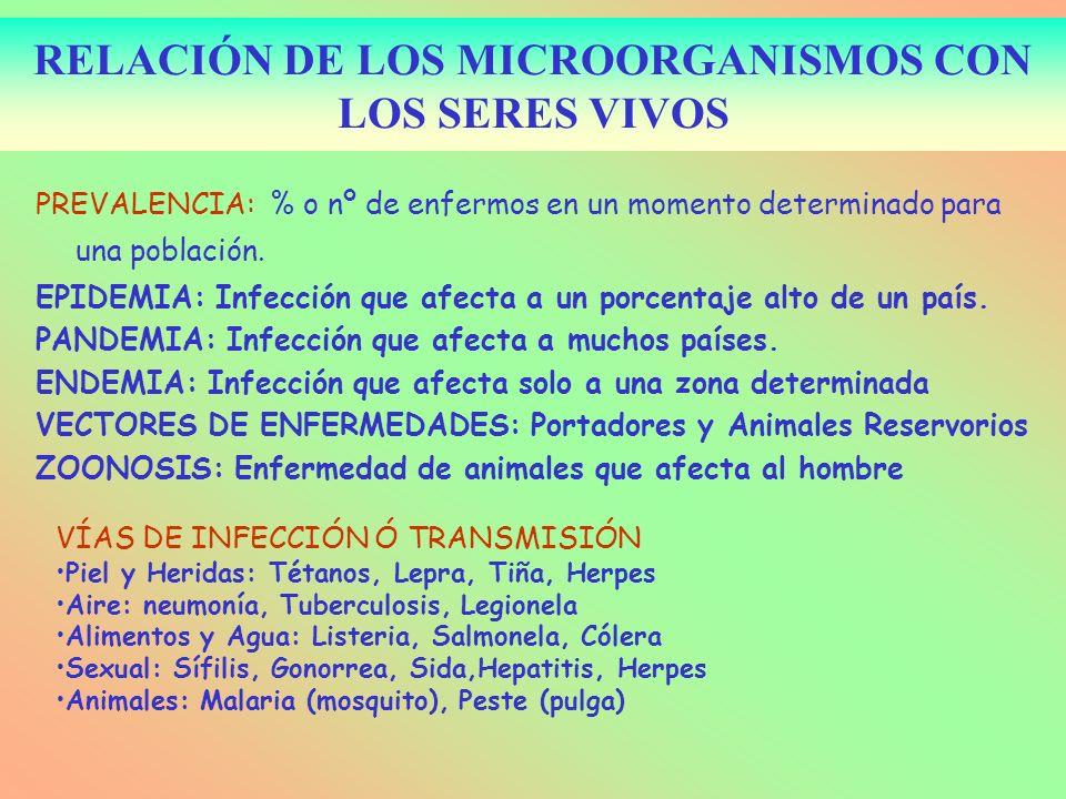 RELACIÓN DE LOS MICROORGANISMOS CON LOS SERES VIVOS