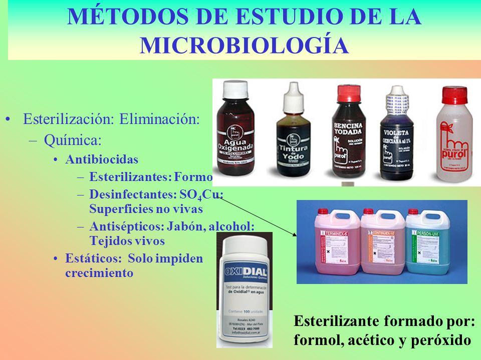 MÉTODOS DE ESTUDIO DE LA MICROBIOLOGÍA