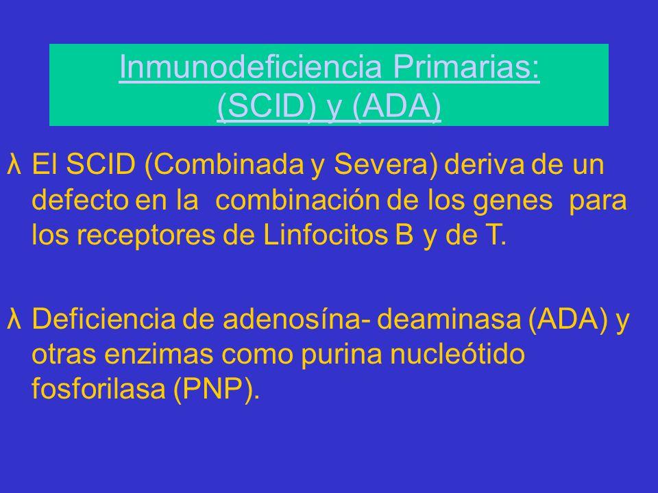 Inmunodeficiencia Primarias: (SCID) y (ADA)