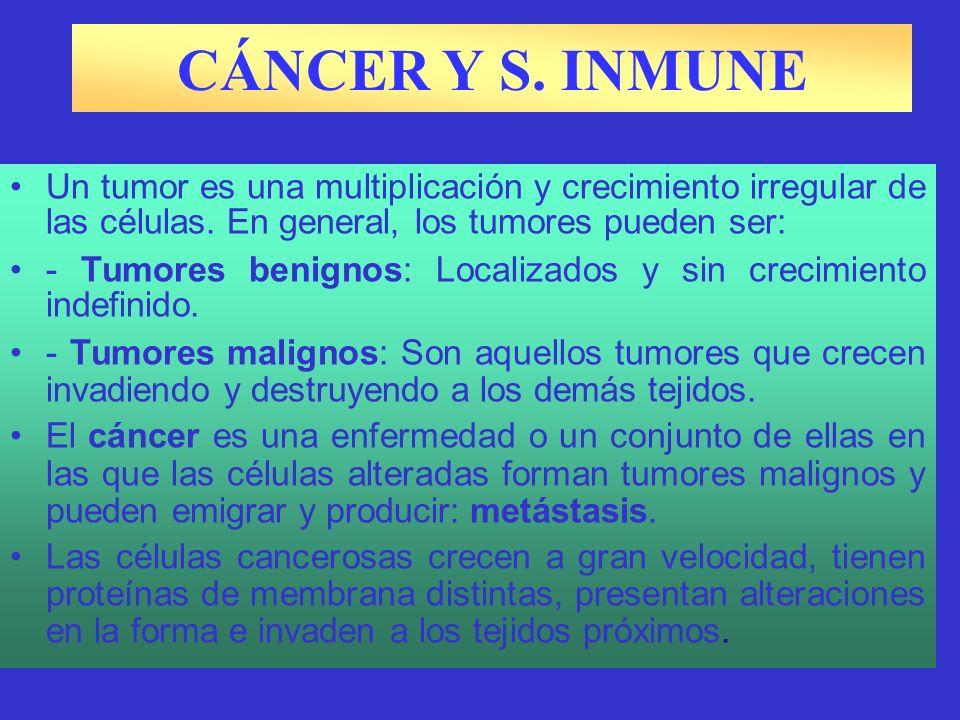 CÁNCER Y S. INMUNE Un tumor es una multiplicación y crecimiento irregular de las células. En general, los tumores pueden ser: