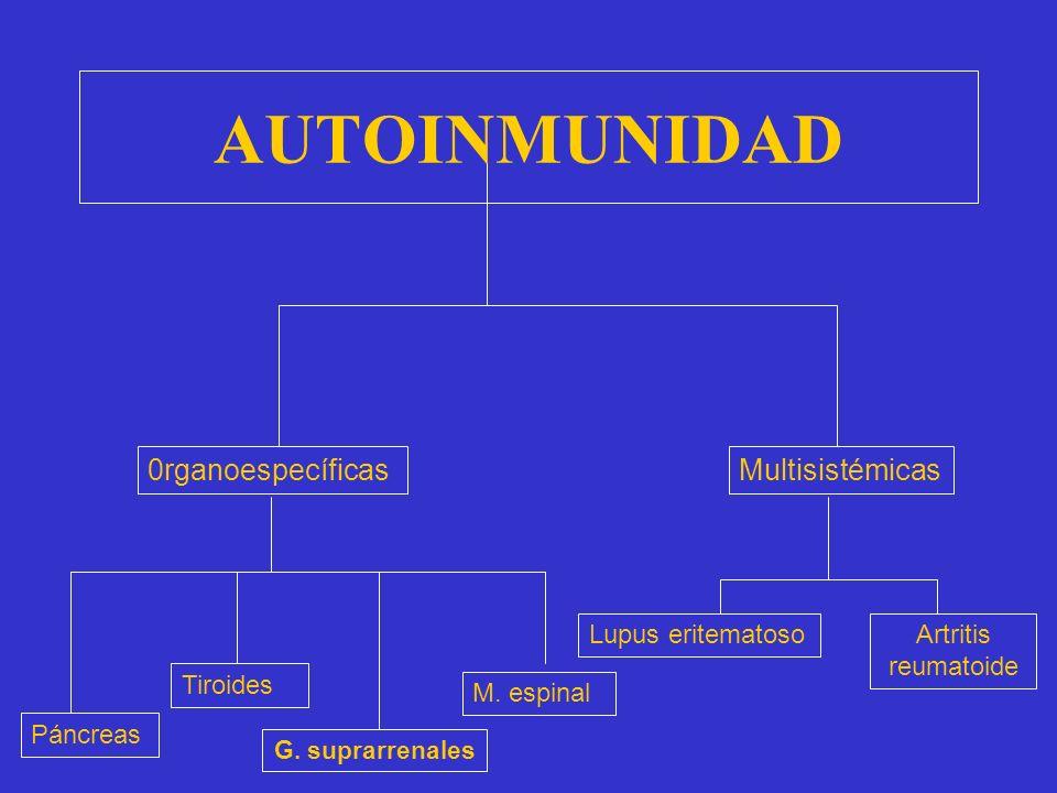 AUTOINMUNIDAD 0rganoespecíficas Multisistémicas Lupus eritematoso