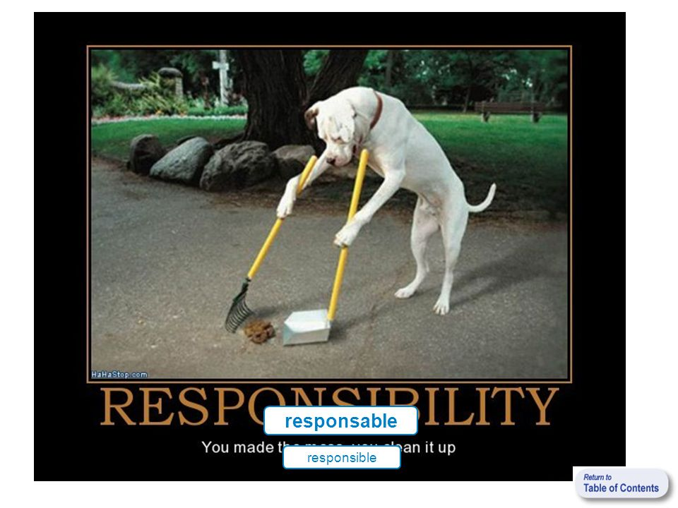 responsable responsible