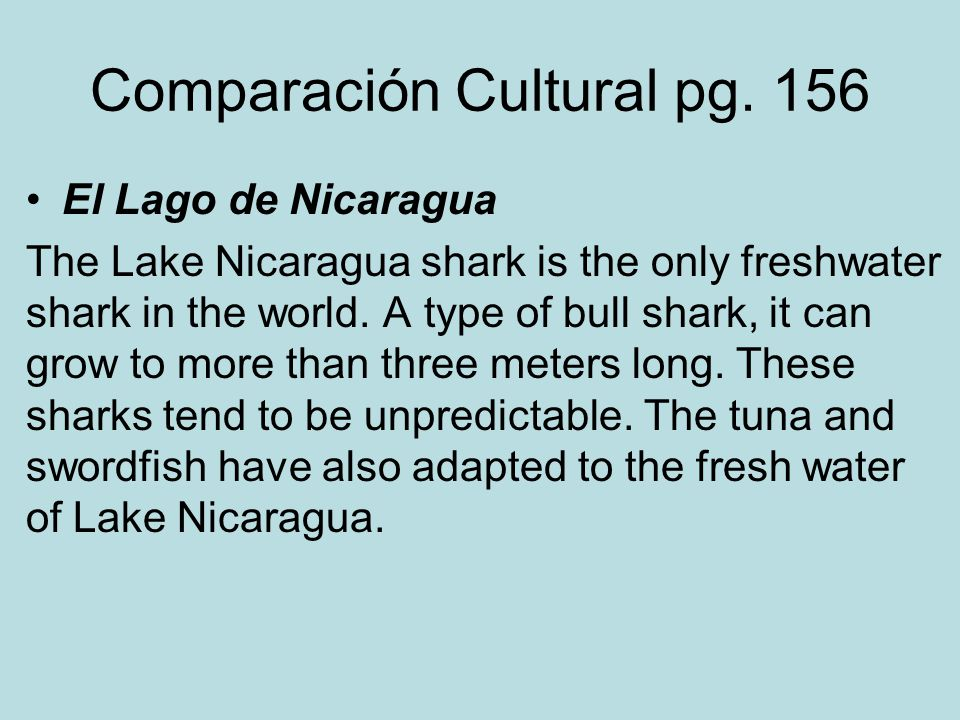 Comparación Cultural pg. 156