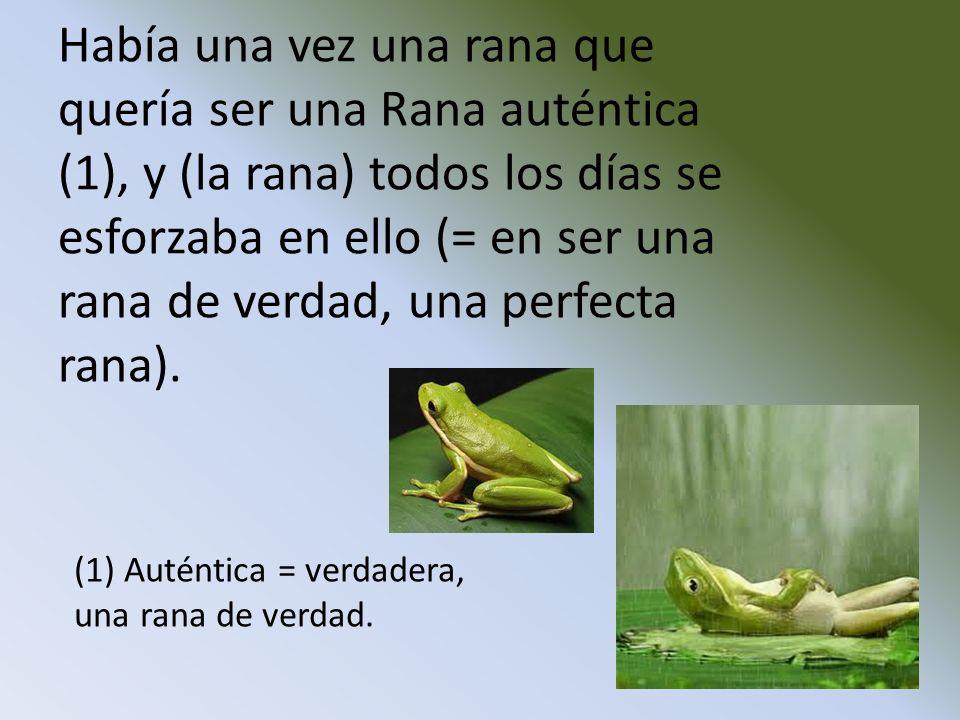 Había una vez una rana que quería ser una Rana auténtica (1), y (la rana) todos los días se esforzaba en ello (= en ser una rana de verdad, una perfecta rana).