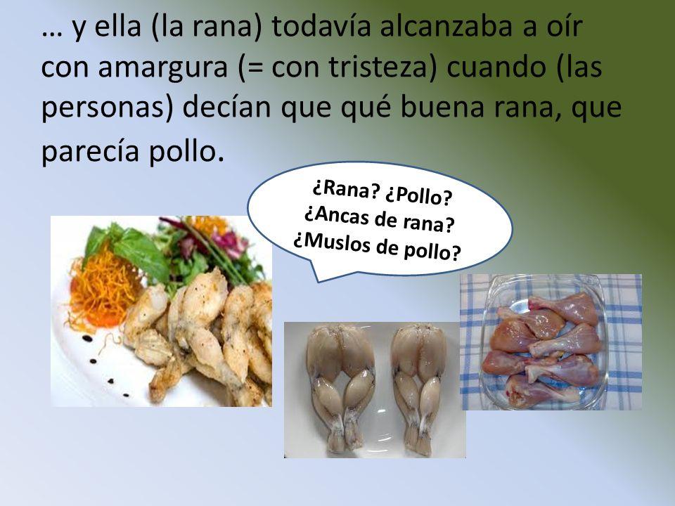 ¿Ancas de rana ¿Muslos de pollo