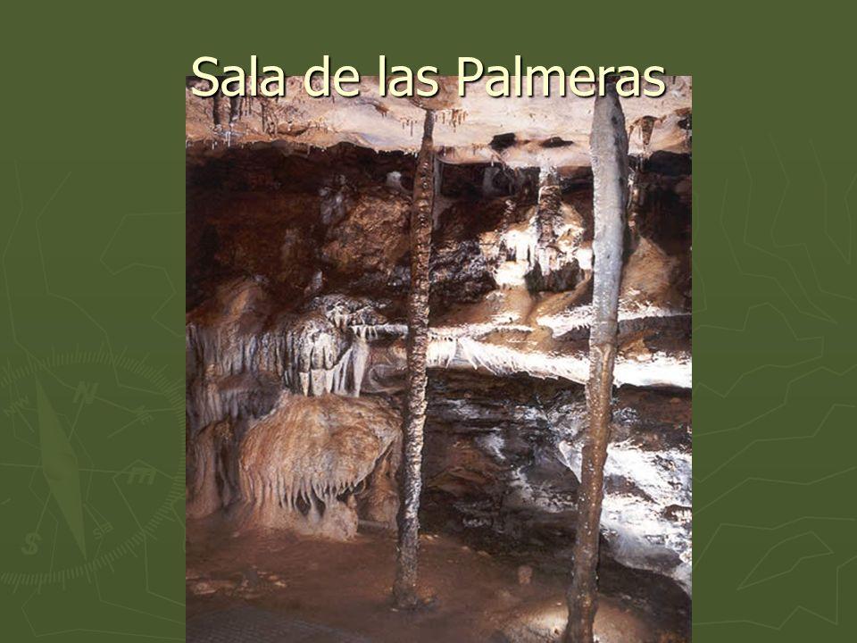 Sala de las Palmeras