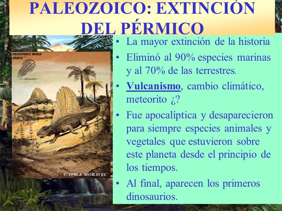 PALEOZOICO: EXTINCIÓN DEL PÉRMICO