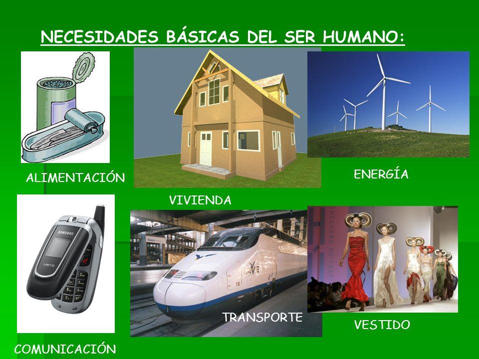NECESIDADES BÁSICAS DEL SER HUMANO: