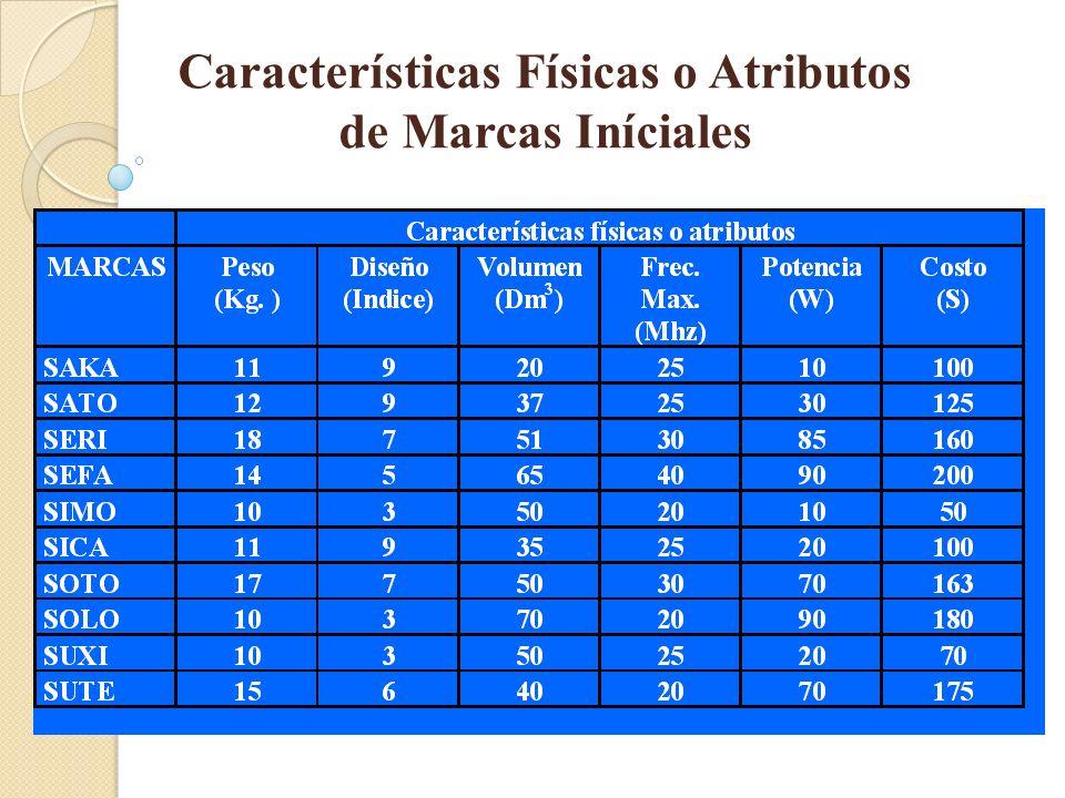 Características Físicas o Atributos de Marcas Iníciales
