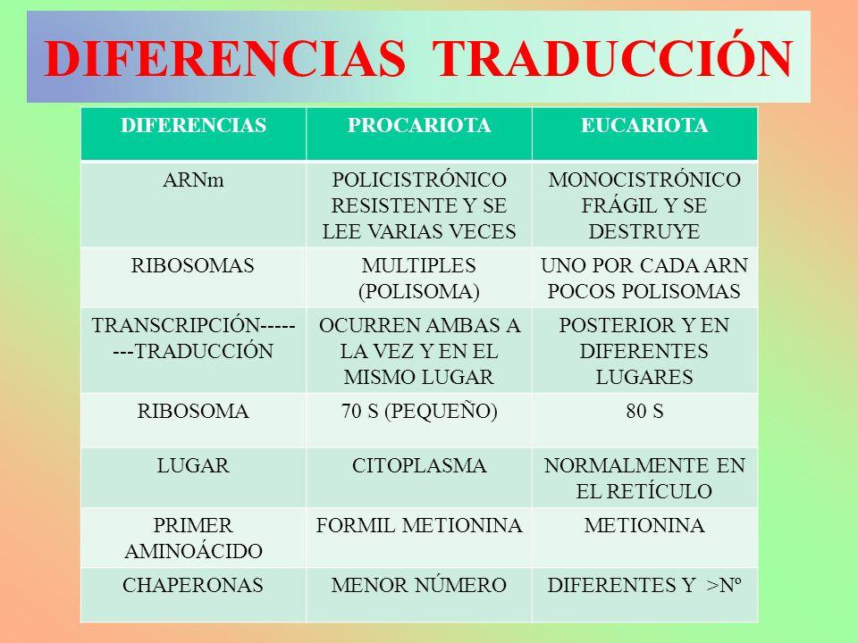 DIFERENCIAS TRADUCCIÓN