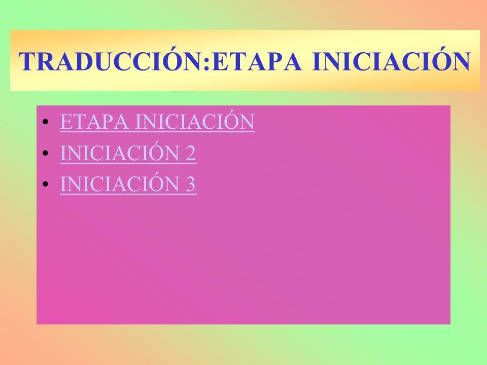 TRADUCCIÓN:ETAPA INICIACIÓN