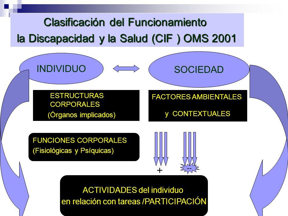 Clasificación del Funcionamiento