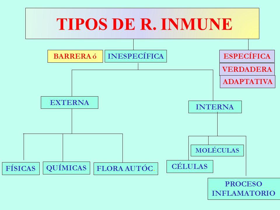 TIPOS DE R. INMUNE BARRERA ó INESPECÍFICA ESPECÍFICA VERDADERA