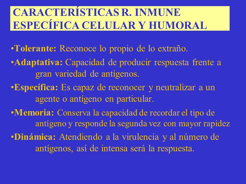CARACTERÍSTICAS R. INMUNE ESPECÍFICA CELULAR Y HUMORAL