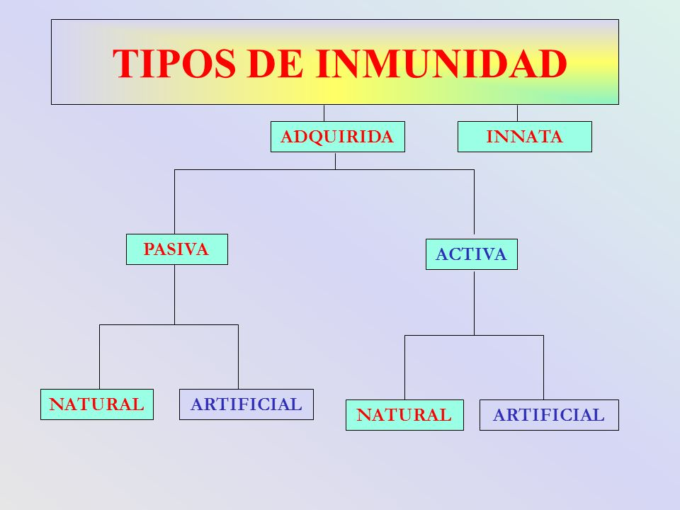TIPOS DE INMUNIDAD ADQUIRIDA INNATA PASIVA ACTIVA NATURAL ARTIFICIAL