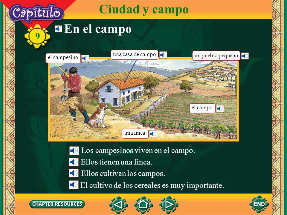Ciudad y campo En el campo Los campesinos viven en el campo.