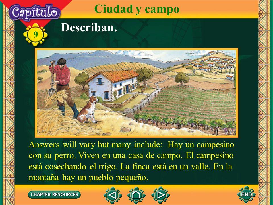 Ciudad y campo Describan.