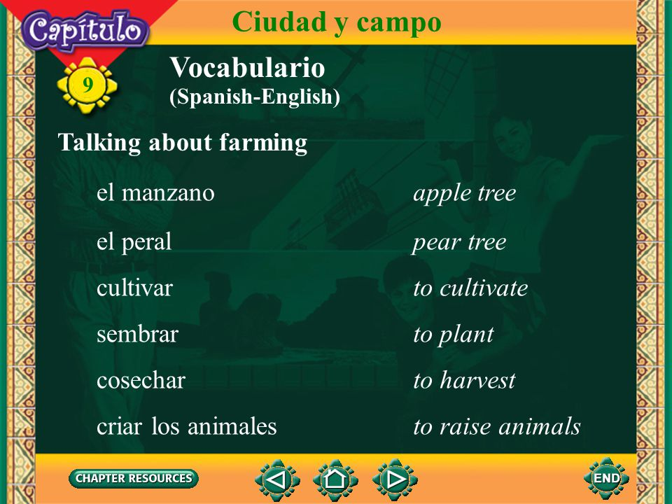 Ciudad y campo Vocabulario Talking about farming el manzano apple tree