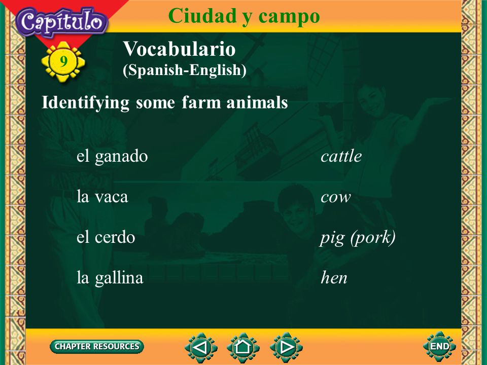 Ciudad y campo Vocabulario Identifying some farm animals el ganado