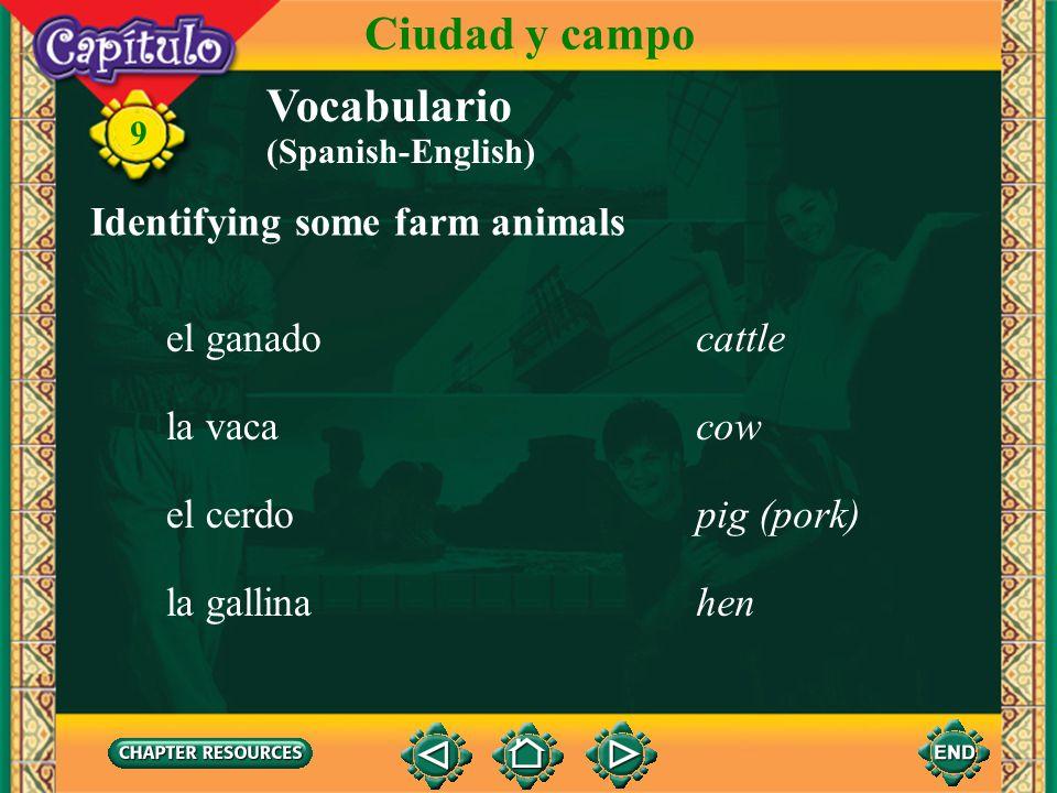 Ciudad y campo Vocabulario Identifying some farm animals el ganado