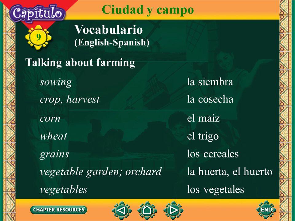 Ciudad y campo Vocabulario Talking about farming sowing la siembra