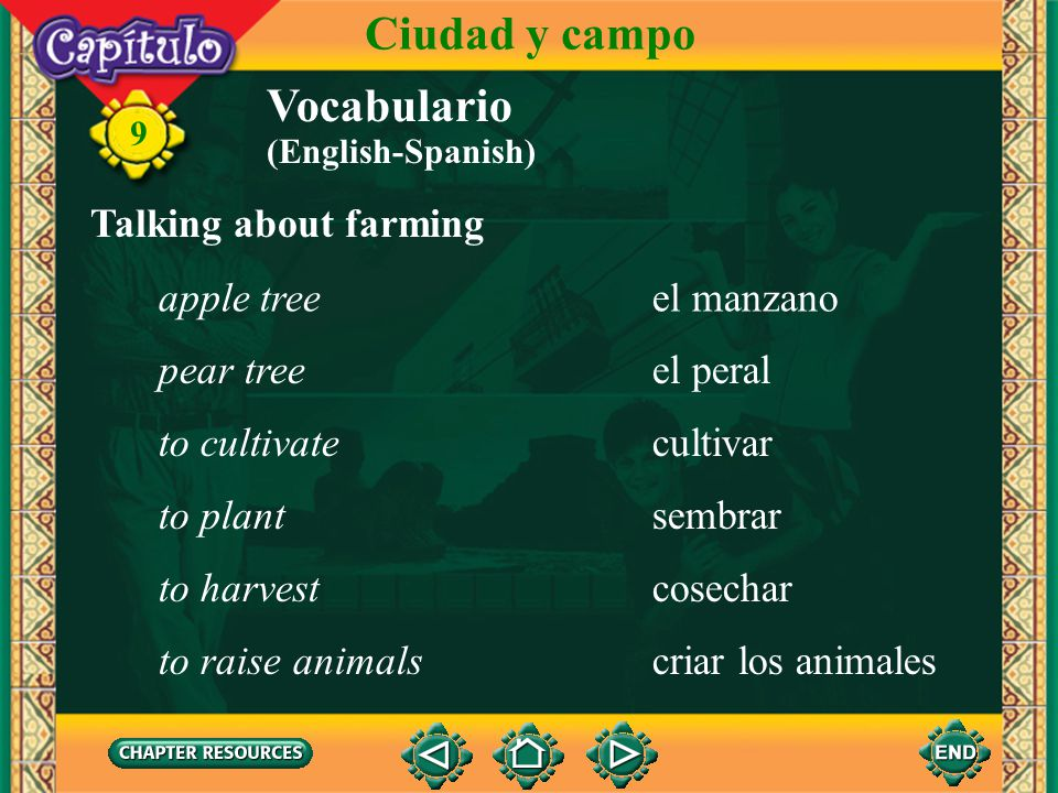 Ciudad y campo Vocabulario Talking about farming apple tree el manzano