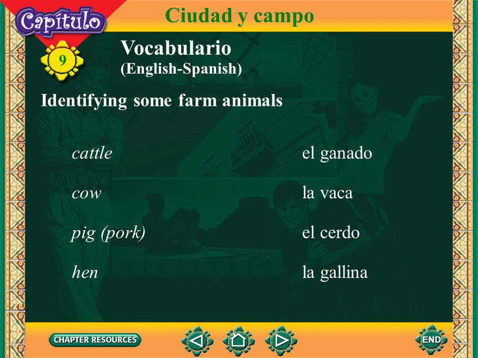 Ciudad y campo Vocabulario Identifying some farm animals cattle