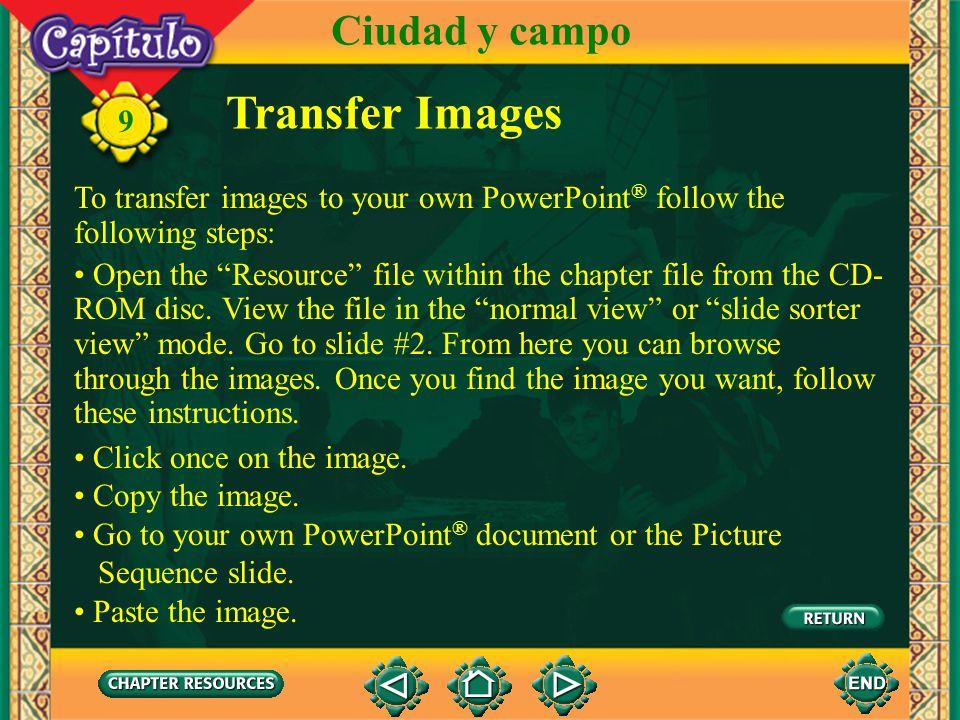 Transfer Images Ciudad y campo