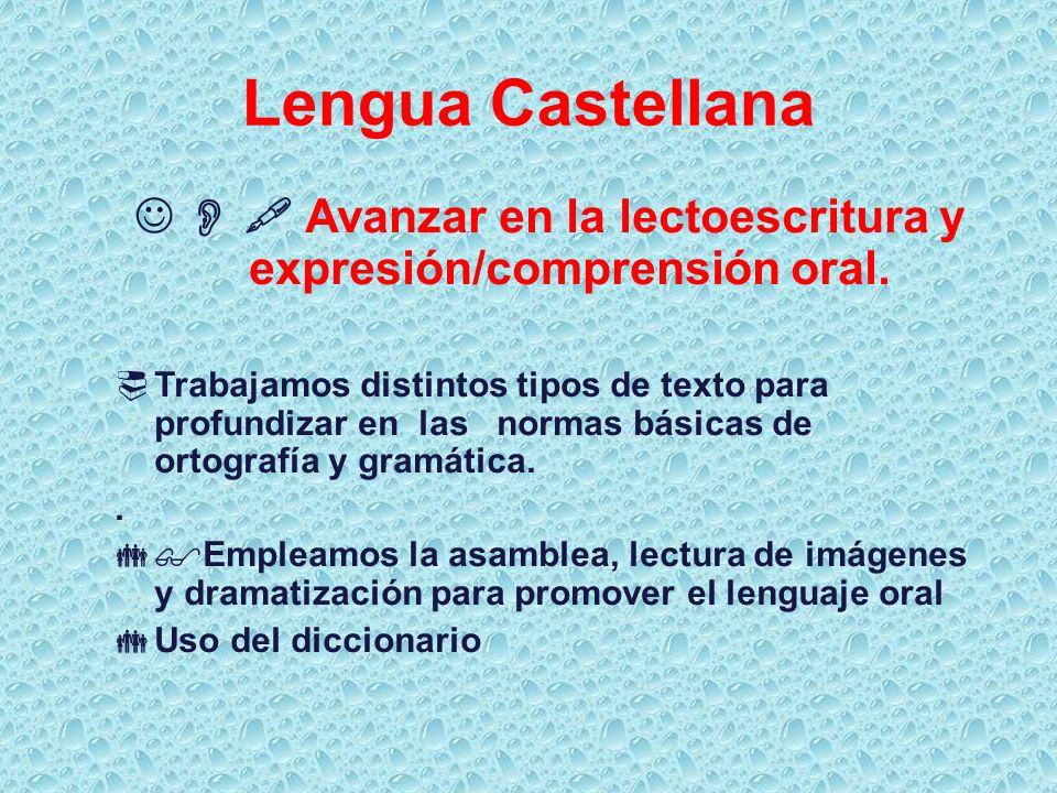   Avanzar en la lectoescritura y expresión/comprensión oral.