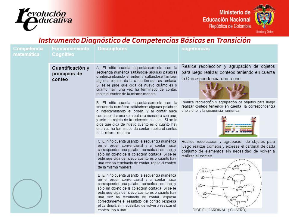 Instrumento Diagnóstico de Competencias Básicas en Transición