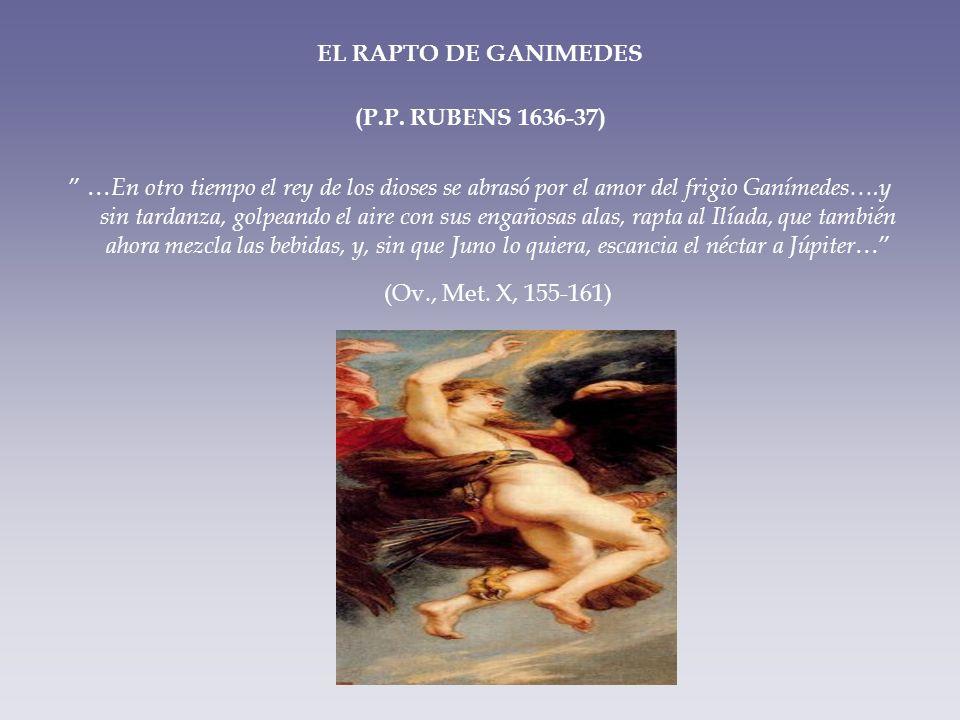EL RAPTO DE GANIMEDES (P.P. RUBENS 1636-37)