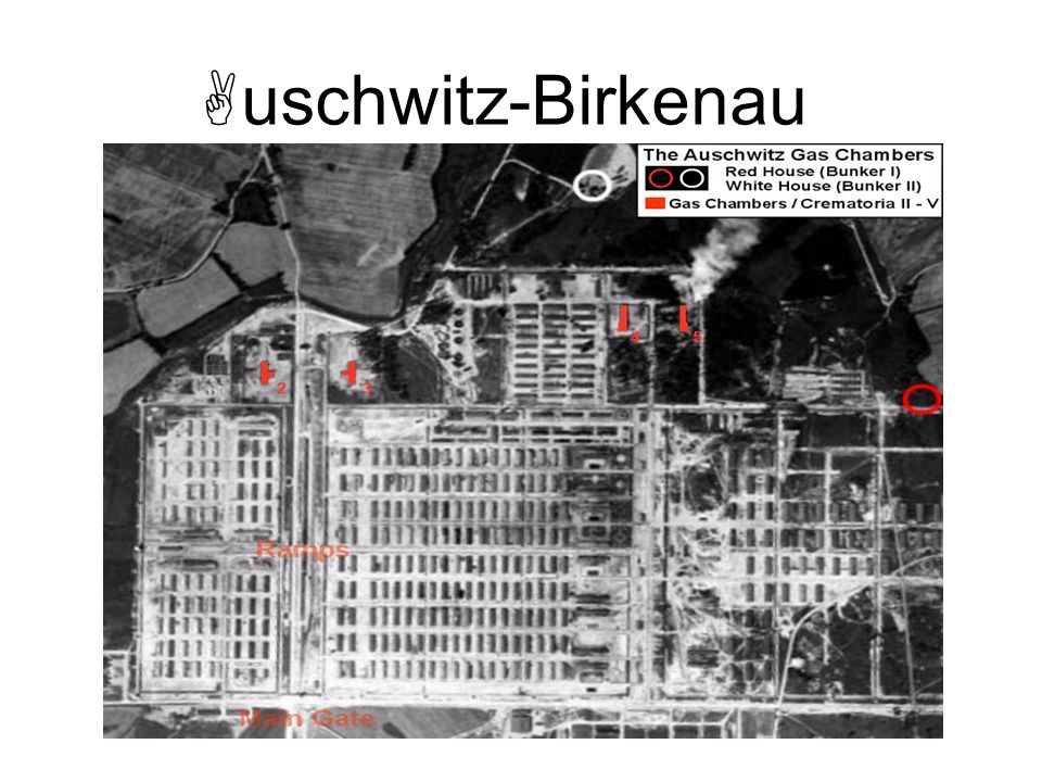 uschwitz-Birkenau Instructor Note: