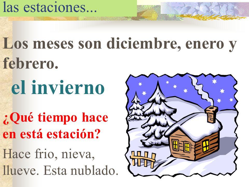 el invierno Los meses son diciembre, enero y febrero.
