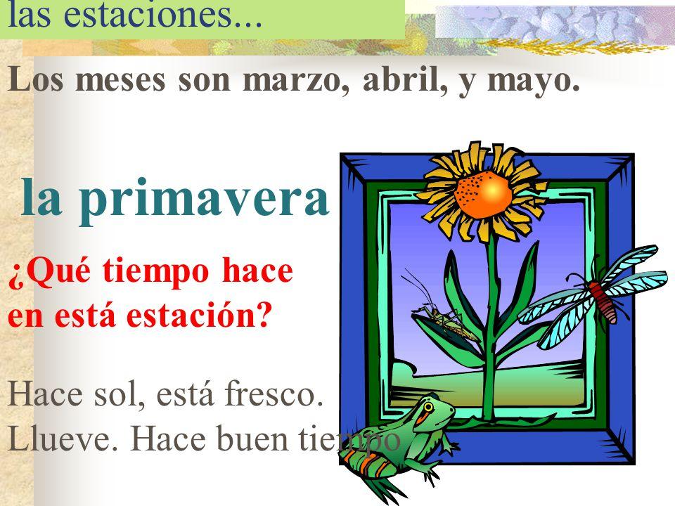 la primavera las estaciones... Los meses son marzo, abril, y mayo.