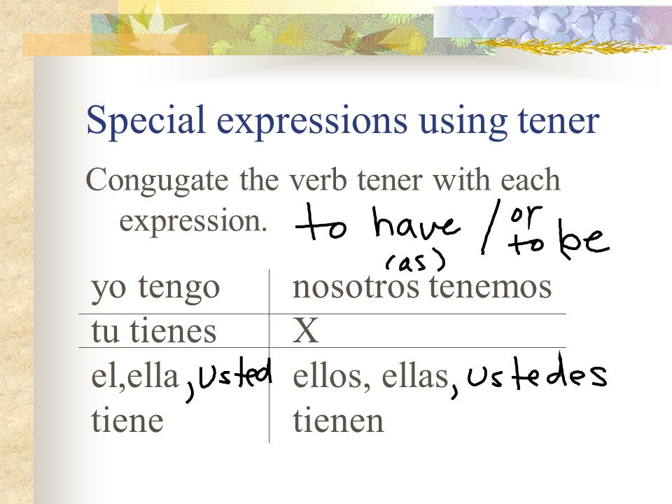 Special expressions using tener