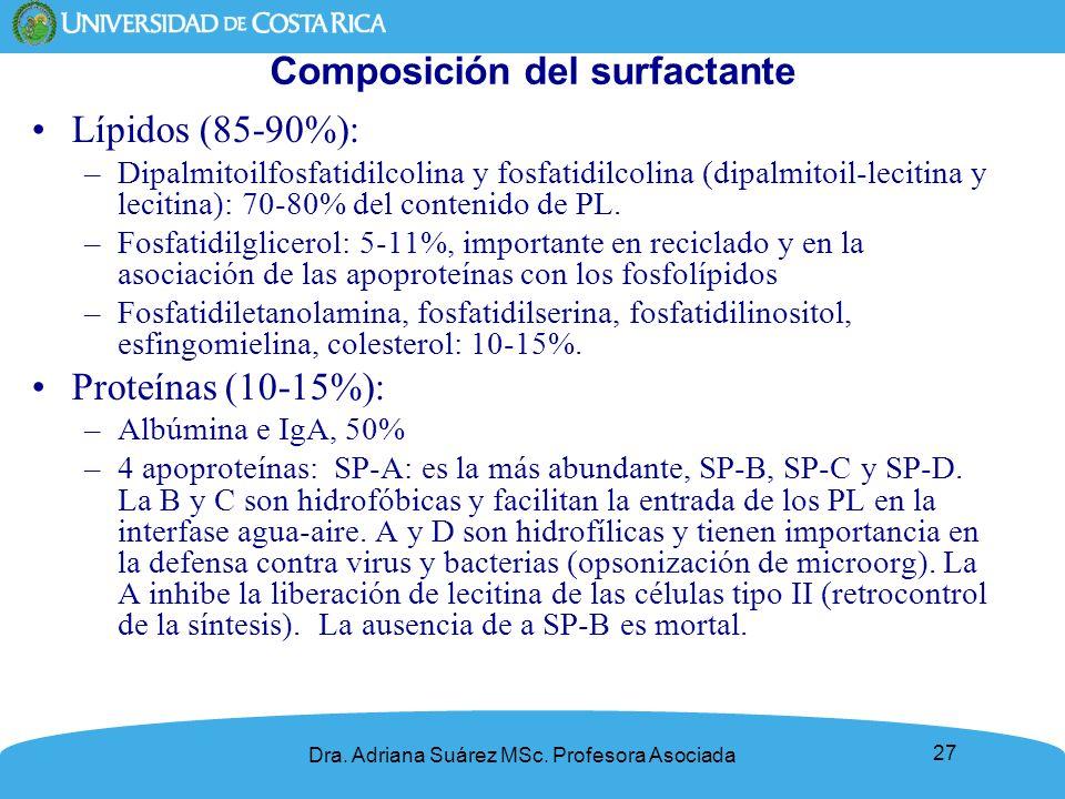 Composición del surfactante