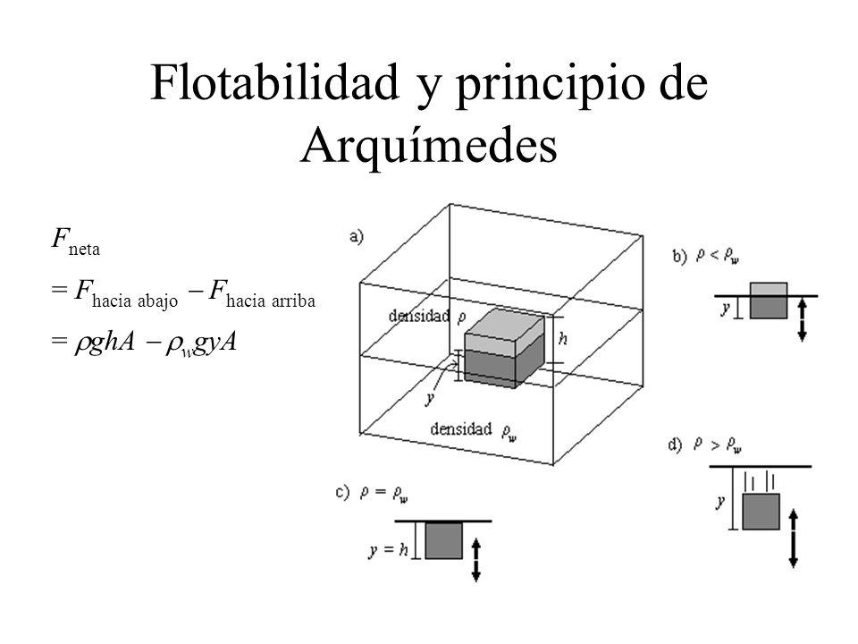 Flotabilidad y principio de Arquímedes