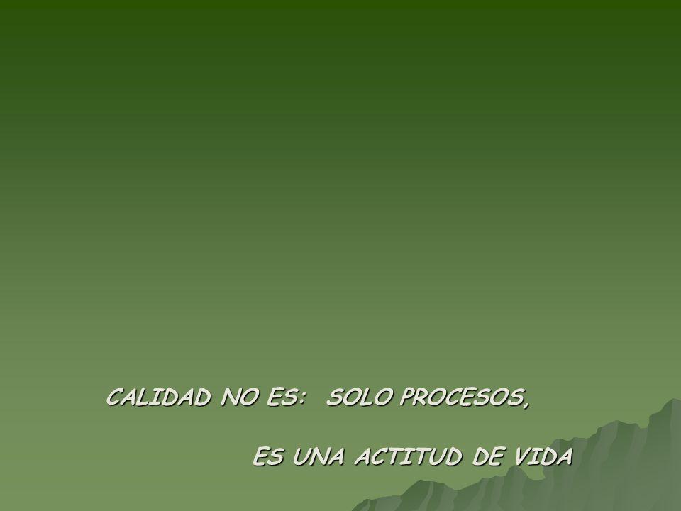 CALIDAD NO ES: SOLO PROCESOS,