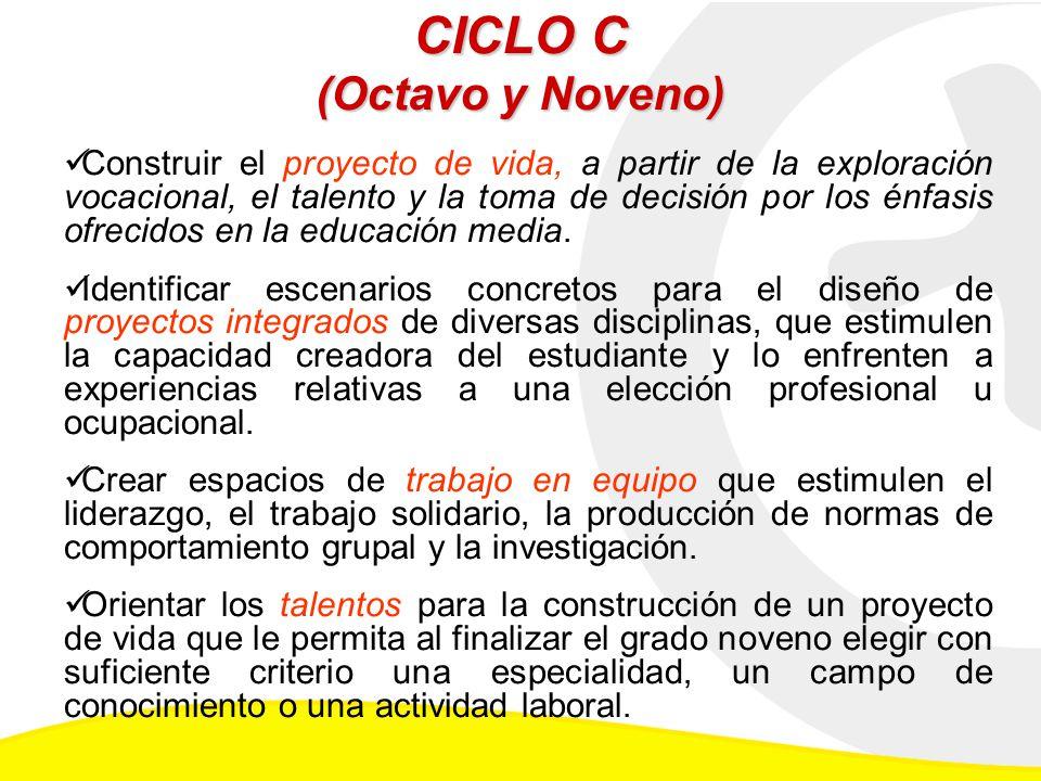 CICLO C (Octavo y Noveno)