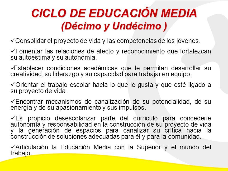 CICLO DE EDUCACIÓN MEDIA