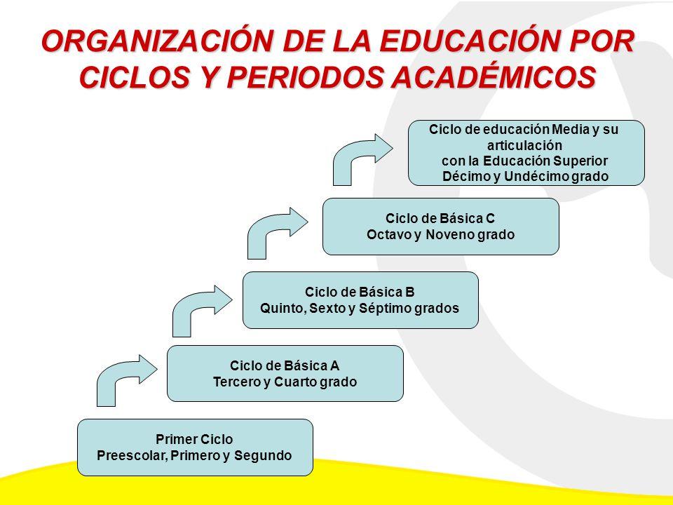 ORGANIZACIÓN DE LA EDUCACIÓN POR CICLOS Y PERIODOS ACADÉMICOS