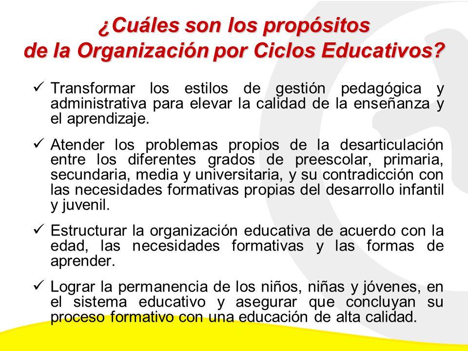 ¿Cuáles son los propósitos de la Organización por Ciclos Educativos
